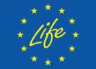life-logo@2x